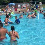 swimming in Kingston